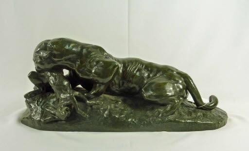 Jaguar dévorant un lièvre (Jaguar, einen Hasen fressend)