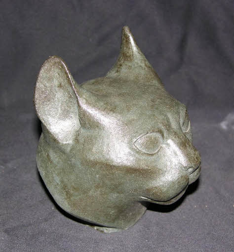 Kopf einer Katze