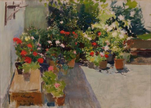 Una azotea con flores (Dachterrasse mit Blumen)