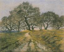 Hügellandschaft mit Bäumen