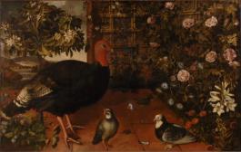 Truthahn, Rebhuhn und Tauben auf einer Terrasse