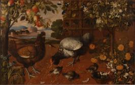 Auerhahn, Hühner und Küken auf einer Terrasse